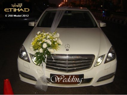 burg el arab&Cairo International Airport limousine service