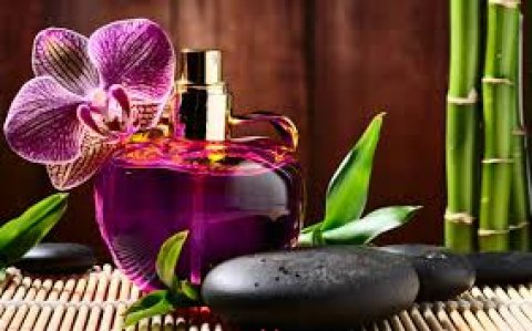 Relax Your Body On chezlong and Get The Best Massage_01226247798