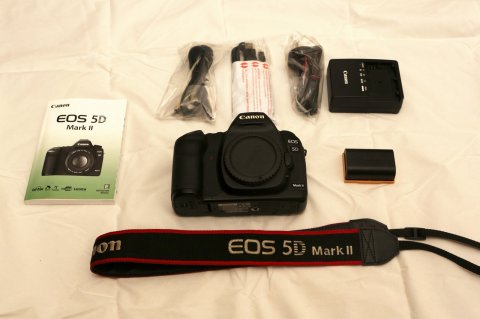 Canon EOS 5D Mark II Camera with EF 24-105mm IS lens‏