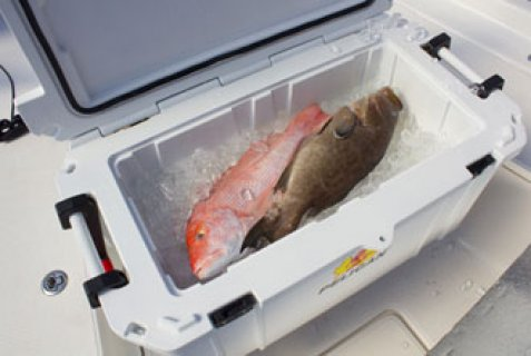 صور Pelican  Elite Cooler 45 QT 4