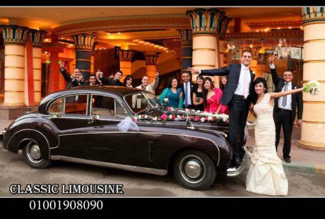 صور cars for wedding and cindrela carriage in egypt 1