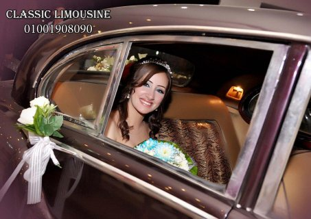 صور cars for wedding and cindrela carriage in egypt 2