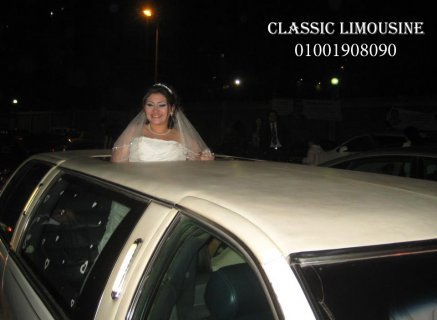 wedding cars and cindrella carriag in .egypt
