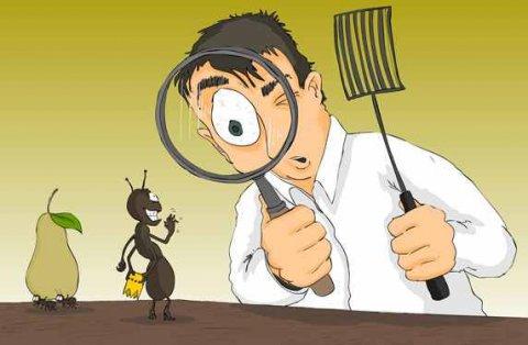 مكافحة جميع أنواع الحشرات بدون مغادرة المكان