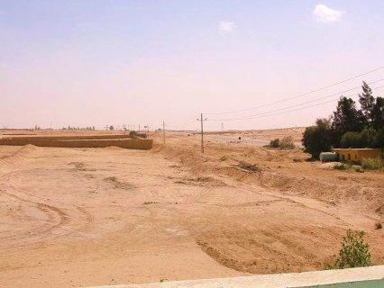 42000 متر أمام مدينة العبور عالأسفلت بالمرافق لكافة المشروعات