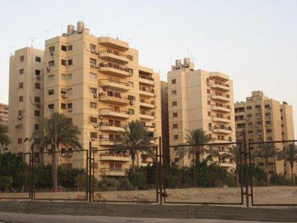 شقة عمارات ابو غزالة