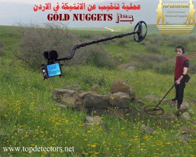 جهاز GOLD NUGGETS متخصص لكشف الذهب الخام وشذرات الذهب