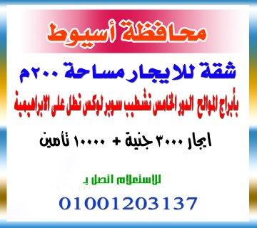 شقة للايجار محافظة اسيوط  مساحة 200 متر