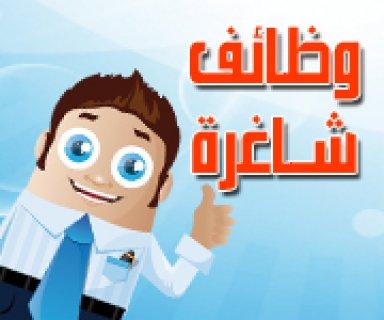 مطلوب محاسبين للعمل فى بنك الخليج