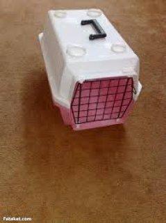 شيالة قطط للبيع