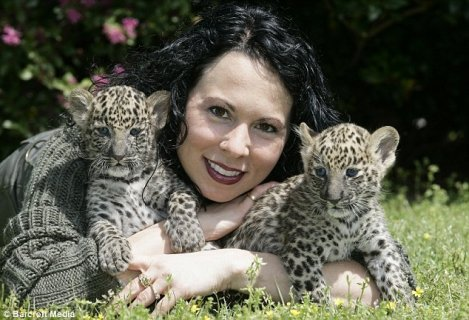,tiger,lion, cheetah,leopard cubs for sale