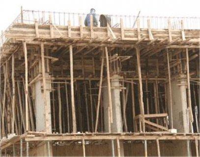 خشب بناء للايجار