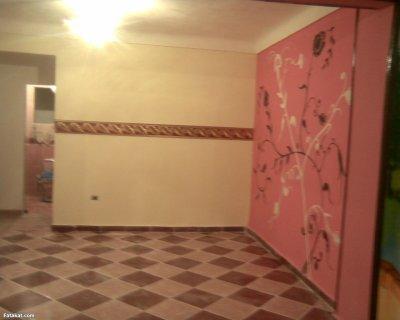 شقة اسكندرية بتسهيلات