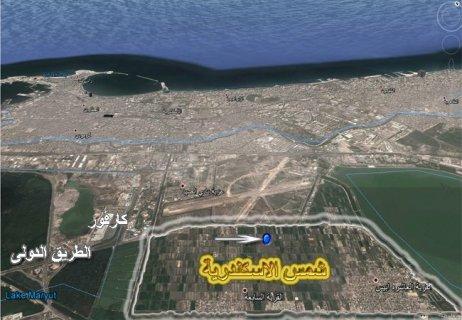 ارض للبيع فى الاسكندرية 850 متر