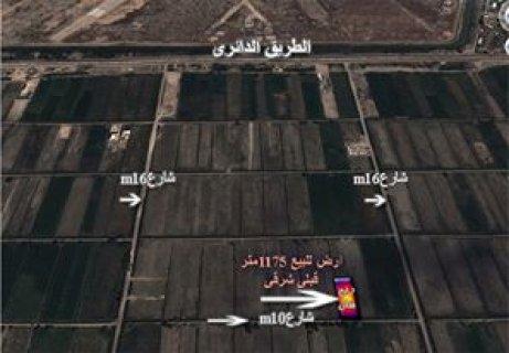 ارض للبيع بالاسكندرية 1175 متر علي الطريق