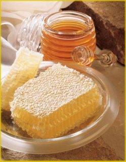 لدينا جميع انواع عسل النحل