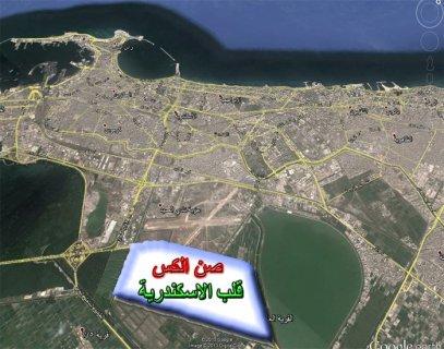 بيع ارض فى اسكندرية 688 متر صن الكس للاراضى