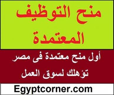 مطلوب محاسبين خبره وبدون