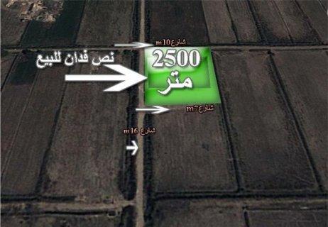 ارض للبيع فى الاسكندرية 2500 متر على الطريق