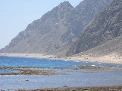 رحلة نوفمبر لجنوب سيناء