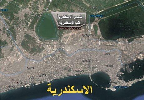 ارض للبيع بالاسكندرية نصف فدان على الطريق الدائرى