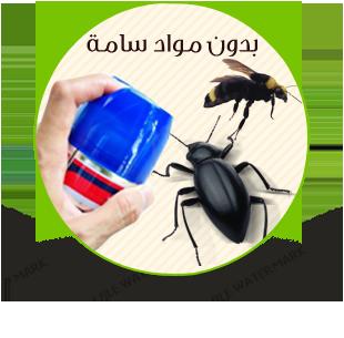 المصراوية لمكافحة الحشرات