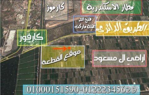 ارض للبيع فى الاسكندرية 500 متر على الطريق الدائرى شركة ال مسعود