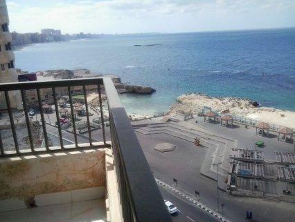 >>شقة مميزة من فينوس بالصور فيو رائع للبحر