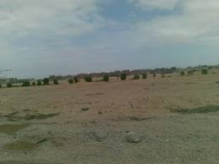 ارض تخصيص مدرسه داخل كمبوند المساحه 6500 م مطلوب 3700 للمتر بتسه