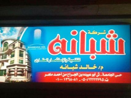 المنصورة حى الجامعة شارع عمرو ابن العاص