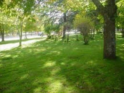 شقة للبيع175م دور ثانى تطل على حديقة بالتجمع بالتقسيط على 5سنوات
