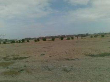 ارض للبيع باللوتس مساحع1088متر مطلوب 7مليون جنيه للتواصل 0111117