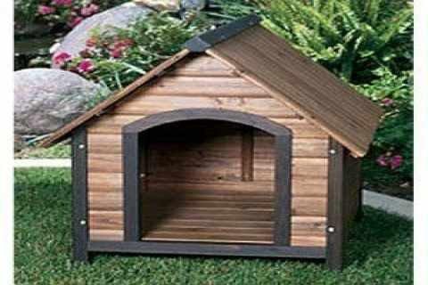 بيوت الكلاب في اشتاء امر مهم جدا