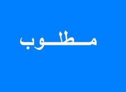 هام وعاجل مطلوب فورا شقة لفنانة عربية