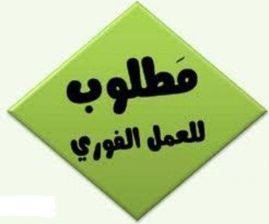 مطــلوب مساعدين مديرين مطاعم براتب 2000 ج
