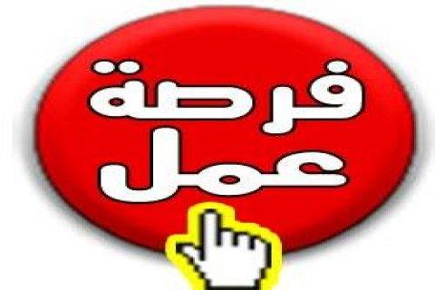 مطلوب شباب بمناطق اكتوبر - التجمع الخامس - الرحاب - مصر الجديد -