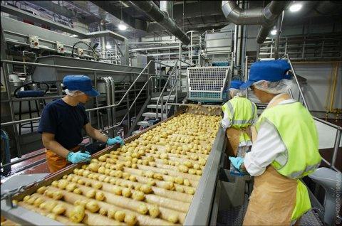عمال إنتاج