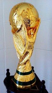 كاس العالم 2014
