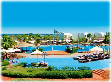 فندق شورز جولدن ريزورت Shores Golden Resort ****4