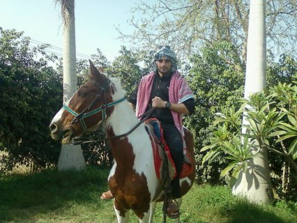 فرسة من اصل فلسطينى ومعها ابنتها (مهرة)