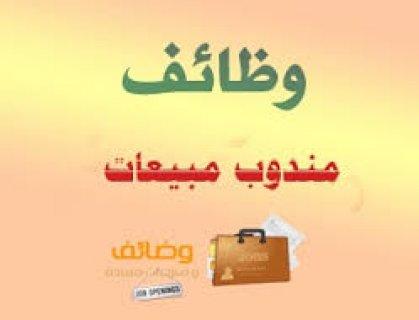 ©مطـــلوب شباب مؤهلات عليا من الهرم للتعين فورا