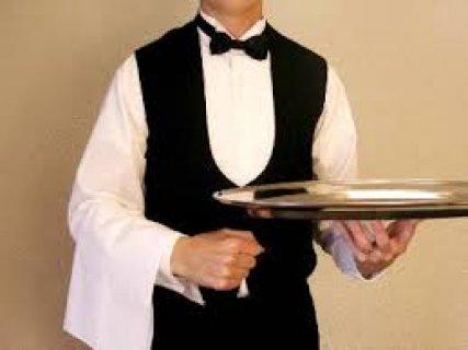 مطـــلوب مديرين مطاعم للتعين فورا برواتب تصل الى 4000 ج مقابلات