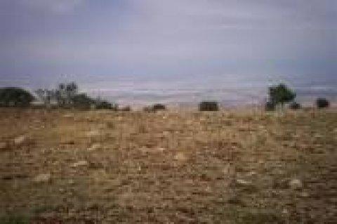 ارض للبيع على الطريق الزراعى مدخل اسكندرية مسجلة شهر عقارى 4200م