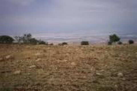 ارض للبيع 4200 م على الطريق الزراعى بجوار مدينة الصيادلة شرق سمو