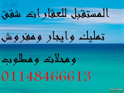 مكتب المستقبل للعقارات شقة مفروشة شارع الزهراء ع شمس عمارة اسانس