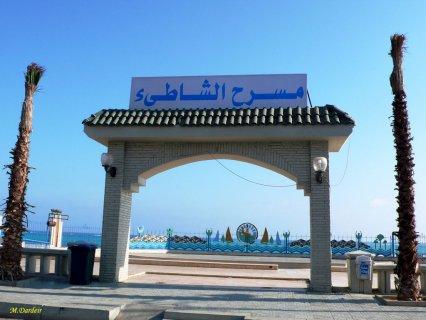 مرسى مطروح - حى علم الروم شارع الغرباوى  - امام المعهد الدينى -