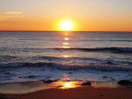 شالية ارضى بحديقة 110م يرى البحر بمقدم 15%