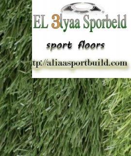 Elalyaa sporbeld Egypt