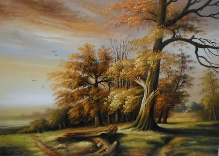 لوحات زيتيه محمد زيد