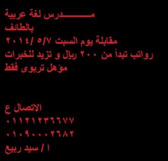 مطــلوب فورا للسعودية مدرسين لغة عربية صفوف اولية جميع الخبرات (